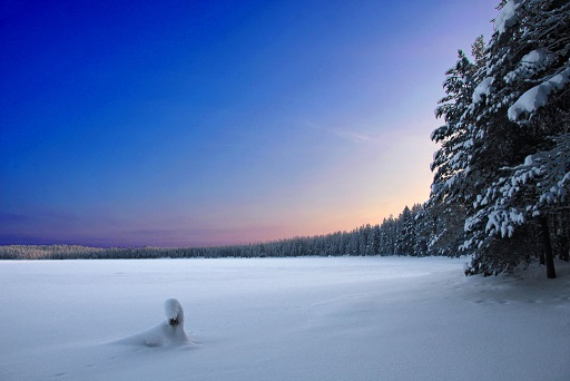 フィンランドb